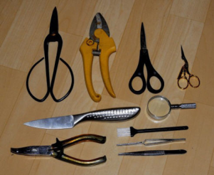 Beginner Bonsai Tools